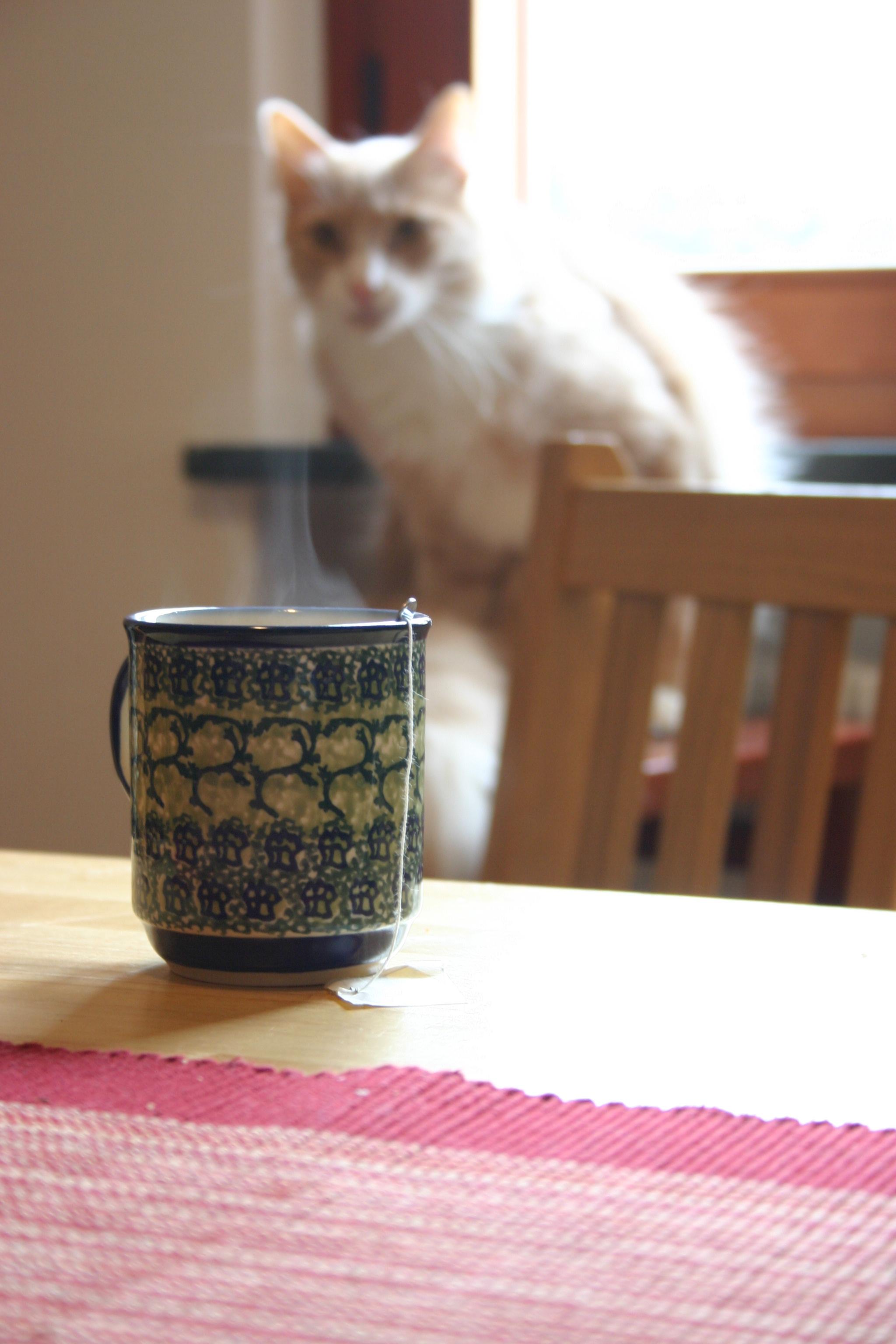 marley &tea